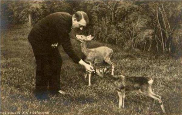 Адольф Гитлер кормит оленёнка